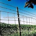 rancho fence post