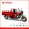 Guangzhou Fekon 150cc 175cc 200cc 250cc three wheel motorcycle for sale