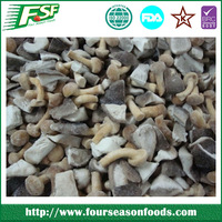 Top quality market prices for mushroom