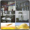 20 de extremo a extremo 800 T por día biodiesel precio