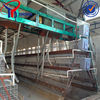 durable egg cage for egg laying chicken poultry farm