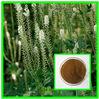 ISO&Kosher 2.5%-8% Triterpene Cimicifuga racemosa extract