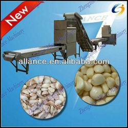 full production line garlic clove breaking machine / garlic peeling machine
