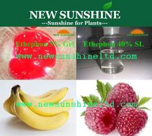Fruit ripening ethephon for Banana, Mango