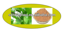 High Quality Ginkgo Biloba Leaf Extract Powder