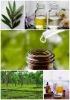 Tea Tree Essential Oil For Scars, Wrinkles, Acne