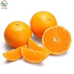 russian citrus fruits importers