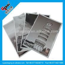 Factory pp sheet protector/L shape file folder/file folder for gift