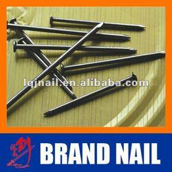 Common Nail / Steel nail/ high quality nail