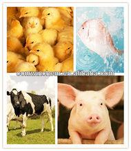 Veterinary,Antibiotic,Nosiheptide,Nosiheptide Premix,CAS:56377-79-8