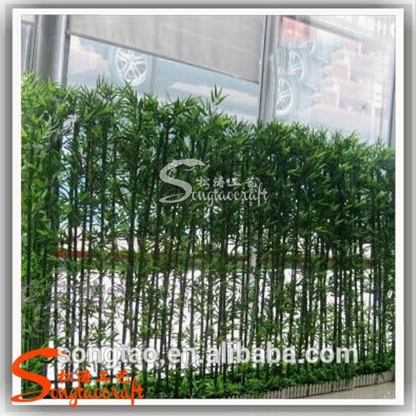 Bambu decoracion exterior - Bambu planta exterior ...