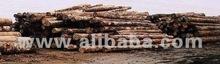 Acacia Mangium timber