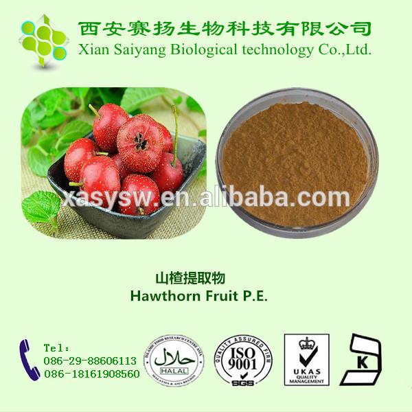 Professional Manufacturer Hot Sale Hawthorn Fruit P.E.