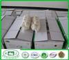 Fresh Garlic Exporters China