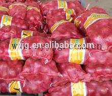 China fresh onions