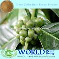 Fabrika kaynağı düşük fiyat yeşil kahve çekirdeği ekstresi tozu, kilo yeşil kahve ekstresi 50%, 60% saf klorojenik asit