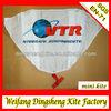 promotional kite mini kites keyring kite