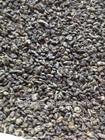 Special chinese green tea gunpowder 3505 to Algeria and Morocco
