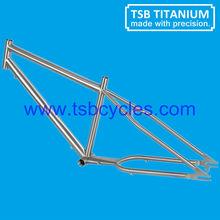 TSB-ZJS0901 bicycle frame beach cruiser