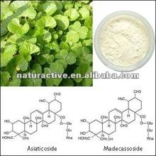 Gotu Kola Extract Total Triterpenoid Glycosides