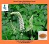 Wild black cohosh extract herbal extract Triterpene Glycosides powder