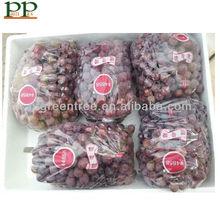2013 attractive fresh grapes price