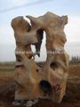 jardim de pedra pedras para decoração
