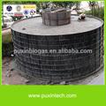 puxin médio porte usina de biogás para gerar eletricidade