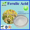 Hot Sale Natural Ferulic Acid Powder.Ferulic Acid
