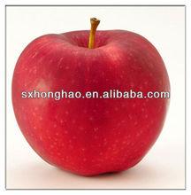 ISO/Halal certified Polyphenol/Phloridzin/Phloretin Apple Extract