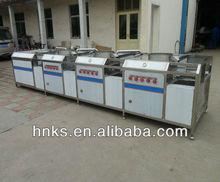 dry fruit processing machine dry raisin washing machine