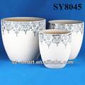 blanco de cerámica macetas de flores