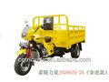 200cc Lifan động cơ ba bánh st200zh