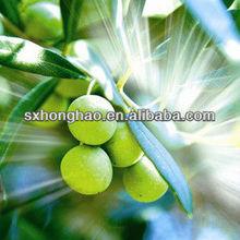 Top Quality 50% Oleanolic Acid Olive Oil Extract Powder