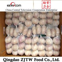 Garlic Supplier Fresh China Natural Garlic Price