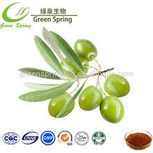 40% oleuropeine olive leaf extract powder