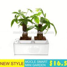 Stack planter