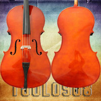 1/2 Size Cello +Bow+Soft Gig Bag+Bridge+Rosin 1/2 Cello Outfit -Natural Color