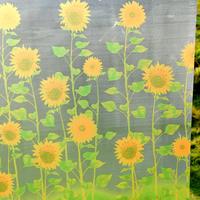 Scrub glass stickers window stickers window paper glass membrane sunflower c1066