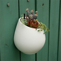 Meat mini hydroponic plants flower pot strengthen ceramic brief scrub quality egg shaped wall