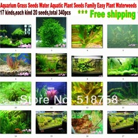 340pcs (17Kinds)  Aquarium Grass Seeds Water Aquatic Plant Seeds Family Easy Plant Waterweeds * Free Shipping