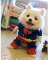 Free Shipping CS05 Newest Comfortable Super Cute Superman Dogs Clothing Fashion Cheap Dogs Clothes Coat For Dogs Pet Clothing
