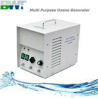 3000 mg/h portable for hotel room ozone machine Ozon Sterilizer Ozonator+ 2 meters teflon and silicon tube+ ozone stone as gift