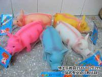 Novelty inflatable toy pig toy pig vent pig Large leather dog