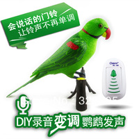 Smart home supplies home dc wireless digital remote control recording parrot doorbell