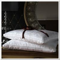 Textile mulberry silk pillow 100% cotton big jacquard beauty