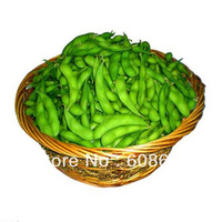Yield (edamame) -  fruits and seeds (seeds) Bag Home Garden - Free Delivery