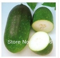 SE1019 100 WHITE GOURD SEEDS * NON-GMO NON HYBRID* Wintermelon Seeds* GREEN CHINESE WATERMELON