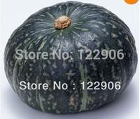 SE1026  Free Shipping 25 Seeds  GREEN America PUMPKIN SEEDS, Organic Vegetables Seeds