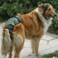 Large dog physiological pants satsuma husky dog menstrual pants Large